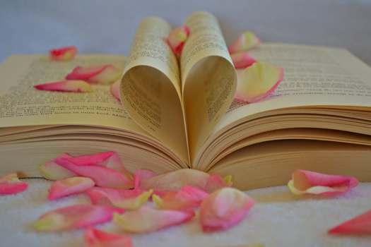 lovebook2